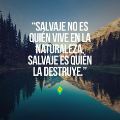 Salvaje no es quién vive en la naturaleza, salvaje es quién la destruye