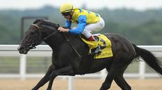 Workmanlike. That word might best describe Novellist in his win over Seismos in the Grosser Preis von Baden (Ger-I) Sept. 1 at Baden-Baden amidst his ongoing preparations for next month's Prix de l'Arc de Triomphe (Fr-I).   Eager to race under Eduardo Pedroza, the 4-year-old Monsun colt spurted to the front early and set a steady pace before stablemate Seismos took charge halfway through the 2,400-meter (about 1 1/2-mile) test, Germany's marquee handicap event.