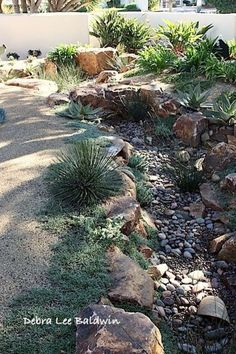For the front yard? This was dug below grade, simulating the way water carves rocky terrain. I like the way plants grow in and along the bed, too. The designer is Bill Schnetz of Schnetz Landscape in Escondido. Landscaping With Rocks, Front Yard Landscaping, Landscaping Ideas, Dry Riverbed Landscaping, Backyard Ideas, Rain Garden, Water Garden, Garden Pond, Garden Paths