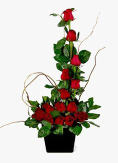 Gauteng Flower & Gift Delivery for all occasions. Whether you are looking for luxury or budget, our flower shops have what you are looking for. Rose Bush, Red Roses, Flower Arrangements, Gift Delivery, Africa, Display, Altars, Plants, Gifts