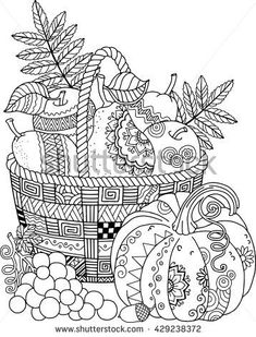 Coloring book for adult. Thanksgiving day. Basket of apples.