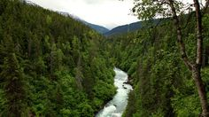 Get lost in the Alaskan wilderness: http://www.gactv.com/gac/on_tv/article/0%2c3035%2cGAC_26073_6069894_04%2c00.html