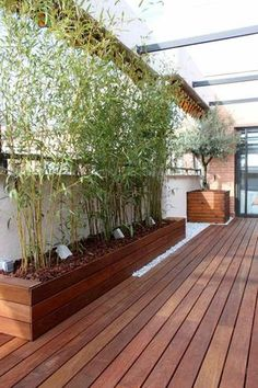 terrasse moderne en bois avec brise-vue bambou en bac à fleurs en bois