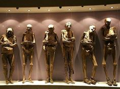 Museo de las Momias — Guanajuato, Mexico - Collection of over 100 mummies. Its a bit freaky!