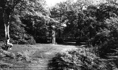 Petts Wood, Willett Woods, The Willett Memorial from Francis Frith Local History, Childhood Memories, Woods, Outdoor, Outdoors, Woodland Forest, Forests, Outdoor Games, The Great Outdoors