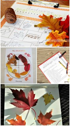 Love these grab & go free printable fall scavenger hunts -- perfect for outdoor play, Halloween fun & Thanksgiving too!