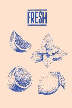 Food graphics: Fresh by Michaela Bystronova
