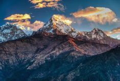 The #Annapurna Region is the most visited #trekking region of #Nepal. The panoramic views of this region are undoubtedly the best among all #Himalayan region. Annapurna Panorama Trek takes you through the Annapurna ridge with impressive perspectives of #Manaslu, #Lamjung, #Dhaulagiri and the Annapurnas.