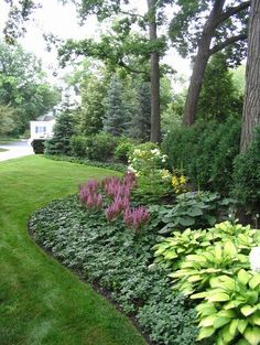 zone 8 low maintenance garden backyard ayout - Google Search