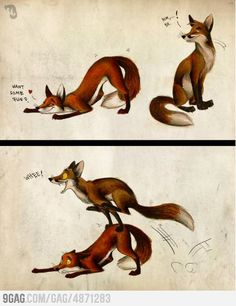 Illustration by Culpeo-Fox on deviantART Furry Art, Art Fox, Funny Animals, Cute Animals, Funny Foxes, The Meta Picture, Fox Drawing, Drawn Art, Furry Comic