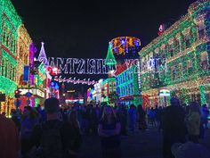 New Year's Eve at Disney World - Osborne Family Spectacle of Dancing Lights.
