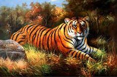 Resultado de imagem para pinturas de tigres