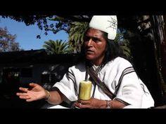 Mamo Lorenzo, Lider espiritual Arhuaco - YouTube Sierra Nevada, Laws Of Life, Climate Change, South America, Youtube, People, Photography, Pinterest Board, Turning