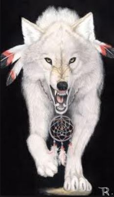 Iphone 5 and Indian Wolf Native Americans iPhone, New glossy phonecase Wolf Totem, Native American Wolf, American Indian Art, Wolf Spirit, My Spirit Animal, Indian Wolf, Native Indian, Fantasy Wolf, Wolf Pictures