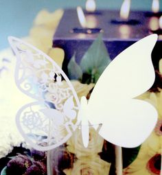 Hey, I found this really awesome Etsy listing at http://www.etsy.com/listing/153820523/pack-of-100-laser-cut-butterfly-table