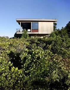 "Surrounded by shrubbery, landscape designer Edwina von Gal planted bayberry and sumac and left the #beach grass. ""The idea is to let the house look like it was simply dropped in the dunes,"" Tamarkin says. (via @Allison House! Beautiful magazine, http://www.housebeautiful.com)"