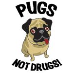 Choose pugs over drugs, its impossible not to! Pugs are so much more addictive than drugs.
