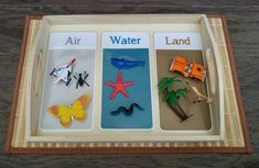 Land/Air/Water Activity Kit Object Matching Gift for Kids Science Montessori, Montessori Trays, Montessori Classroom, Montessori Materials, Classroom Activities, Classroom Ideas, Child Please, Home Daycare, Bamboo Basket