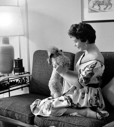 Gloria DeHaven plays with her poodle Poodle Cuts, Poodle Mix, Poodles, Gloria Dehaven, Ann Margret, Vintage Dog, Old Hollywood Glamour, Cinema, Baby Dogs