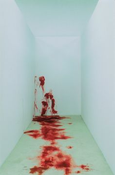 """""""What is this place?"""" He asked, his voice slightly apprehensive. Melanie gestured to the room. """"It's the safe room, while the prisoner is in here, she can't die."""" He frowned slightly. """"Then why is there so much blood?"""" Melanie laughed. """"I said she couldn't die, I never said she couldn't bleed."""" (B4: Downfall of Hope) ~Wendy Hamlet"""