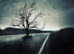 Amazing conceptual photography - [ more photography: http://makeyourideasart.com ]