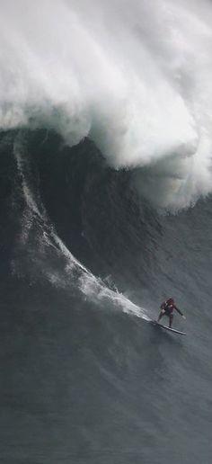 Nazaré contre surfeurs, le duel - Tous les ans, les surfeurs les plus téméraires se lancent à la conquête de la vague de Nazaré, sur les côtes de la Praia do Norte, au Portugal