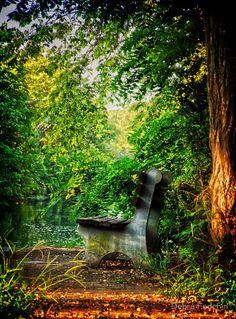 """The Bench"" by Debra Fedchin | Redbubble"