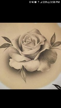 New Flowers Drawing Bleistift 55 Ideas New Flowers Drawing Pencil 55 Ideas Rose Drawing Tattoo, Tattoo Drawings, Body Art Tattoos, Pencil Art Drawings, Art Drawings Sketches, Rose Zeichnung Tattoo, Illustrations Pastel, Tattoo Crane, Molduras Vintage