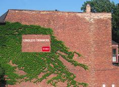 Toro: Ivy wall http://arcreactions.com/