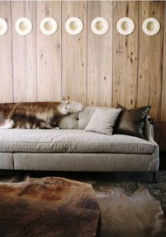 Love the couch, rough wood and cowhide rug