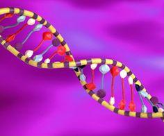 ¿Tienes ADN de emprendedor?