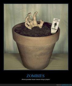 Ahora ya puedes plantar tu propio zombie - Ahora puedes hacer crecer el tuyo propio   Gracias a http://www.cuantarazon.com/   Si quieres leer la noticia completa visita: http://www.estoy-aburrido.com/ahora-ya-puedes-plantar-tu-propio-zombie-ahora-puedes-hacer-crecer-el-tuyo-propio/