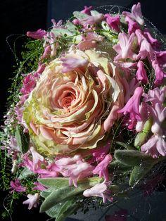 Sydd rose mm