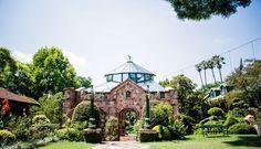 Shepstone Gardens – Shepstone Gardens