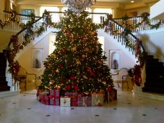 ! foyer tree! Holy cow if I I could afford a foyer like that #1 my tree would be way cooler and #2 I would be in Italy for Christmas! !