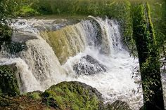 Cascade Falls: Guide River, Ridgley, north west #Tasmania #waterfall ~ photo by Carol Haberle, article for think-tasmania.com Cascade Falls, Waterfall Photo, North Cascades, South Pacific, Tasmania, Natural Wonders, North West, Niagara Falls, Pacific Cruise