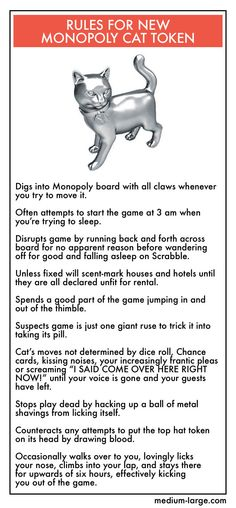 """New Monopoly Cat token """"rules"""" of the game, LOL Crazy Cat Lady, Crazy Cats, Funny Animals, Cute Animals, Trying To Sleep, All About Cats, Funny Cute, Hilarious, Cat Art"""
