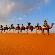 If you'd like to learn about what it's like to trvel to the Sahara desert, read Sarah's blog post!