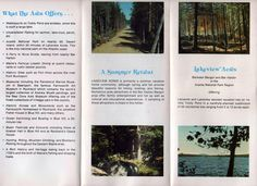 Brochure of Lakeview and Lakeside Lots for sale on Toddy Pond, Penobscot, Maine, c1970's, colorful, good shape by VintageNEJunk on Etsy