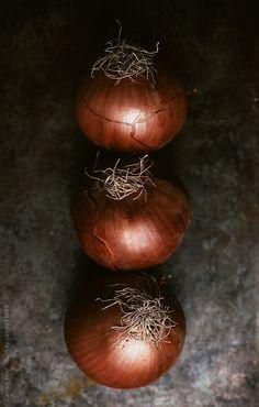 Onions by Darren Muir | Stocksy United