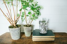 Candle Holder With Chicken Wire | The Magnolia Market