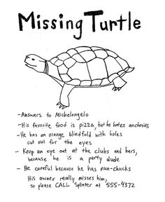 Have You Seen ♡ Sign ♡ Flier ♡ Turtle ♡ Funny
