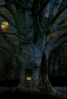tree by moonlight. Tree natuurbeleving www. Beautiful Moon, Beautiful World, Beautiful Tree Houses, Beautiful Things, All Nature, Amazing Nature, Tree Of Life, Belle Photo, Faeries