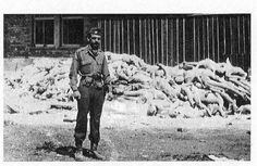 This picture shows me, Capt. Alfred de Grazia, in front of a pile of dead bodies at Dachau concentration camp in Bavaria Germany, two (maybe three) days after the liberation of the camp by the American army. I was then Commanding Officer of the Psychological Warfare Combat Propaganda Team attached to HQ, the Seventh Army.