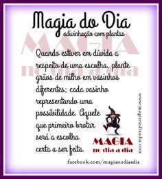 Magia no Dia a Dia: Magia do Dia: escolhas