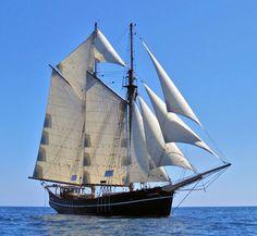De zeevaart op Amerika speelt een hele belangrijke rol in de geschiedenis van Lloret vooral tussen 1830 en 1860 gaf het een enorme rijkdom en werden dit soort schepen veel gebouwd in Lloret