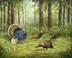Michael Scherer~Wild Turkey