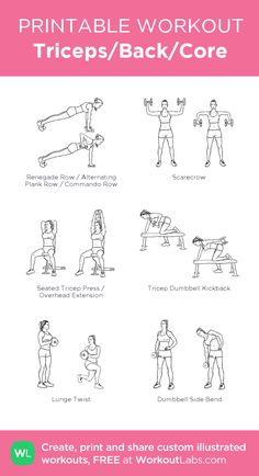 Triceps/Back/Core: my visual workout created at WorkoutLabs.com • Click through to customize and download as a FREE PDF! #customworkout