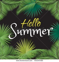 Hello summer, calligraphy, lettering. Brazil 2016. Rio 2016 party. Sport camp. Brazil beach. Brazil sport camp. Rio kids camp. Palm tree leaves frame. Vector illustration. Vintage style.
