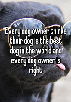 """Every dog owner thinks their dog is the best dog in the world and every dog owner is right"""